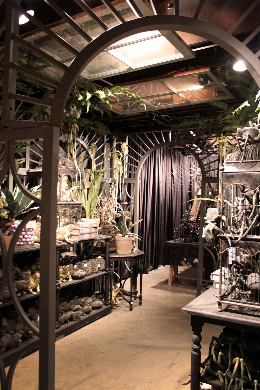 roger s gardens halloween display goth up your greenhouse on classy backyard design ideas may be you never think id=56028