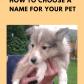 Pet names how do you choose dog groups dog and animal