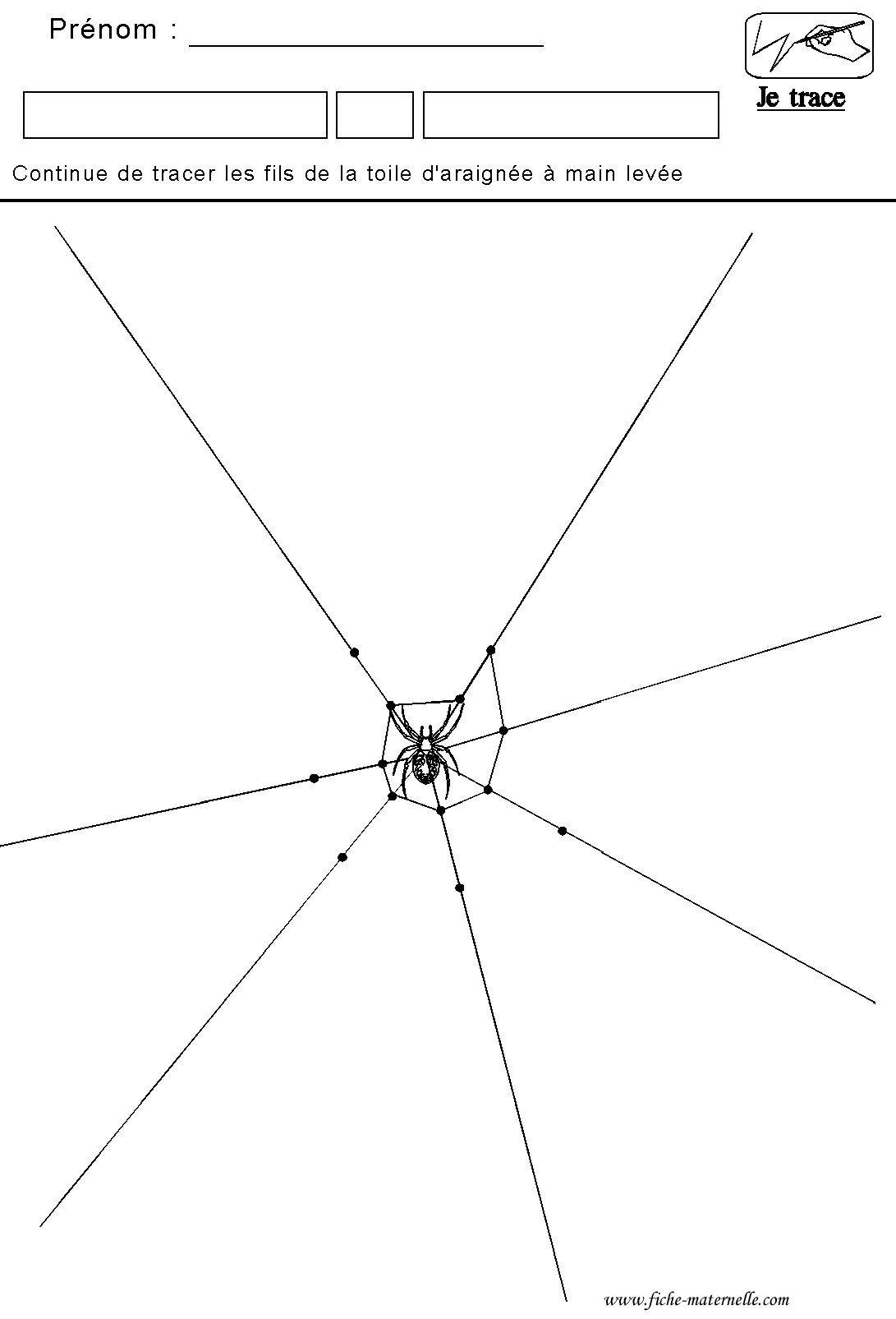 Graphisme Tracer Des Lines De La Toile D Araignee