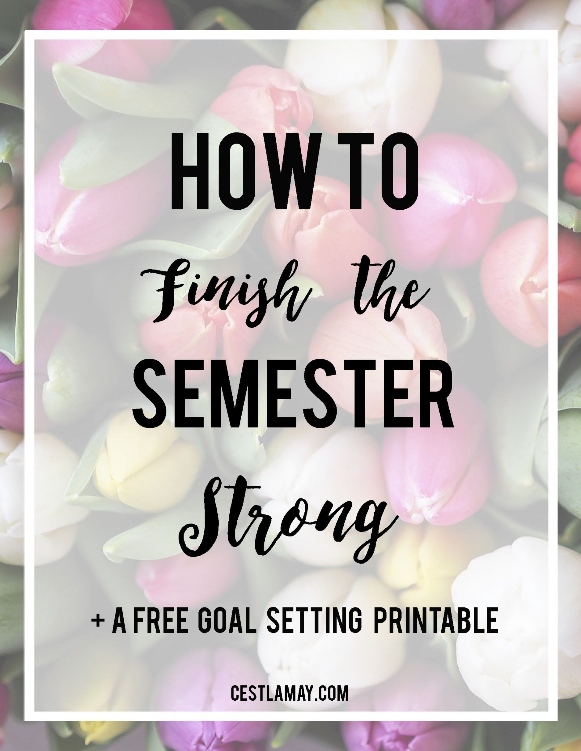 Tips From Endless May On How To Finish Your College