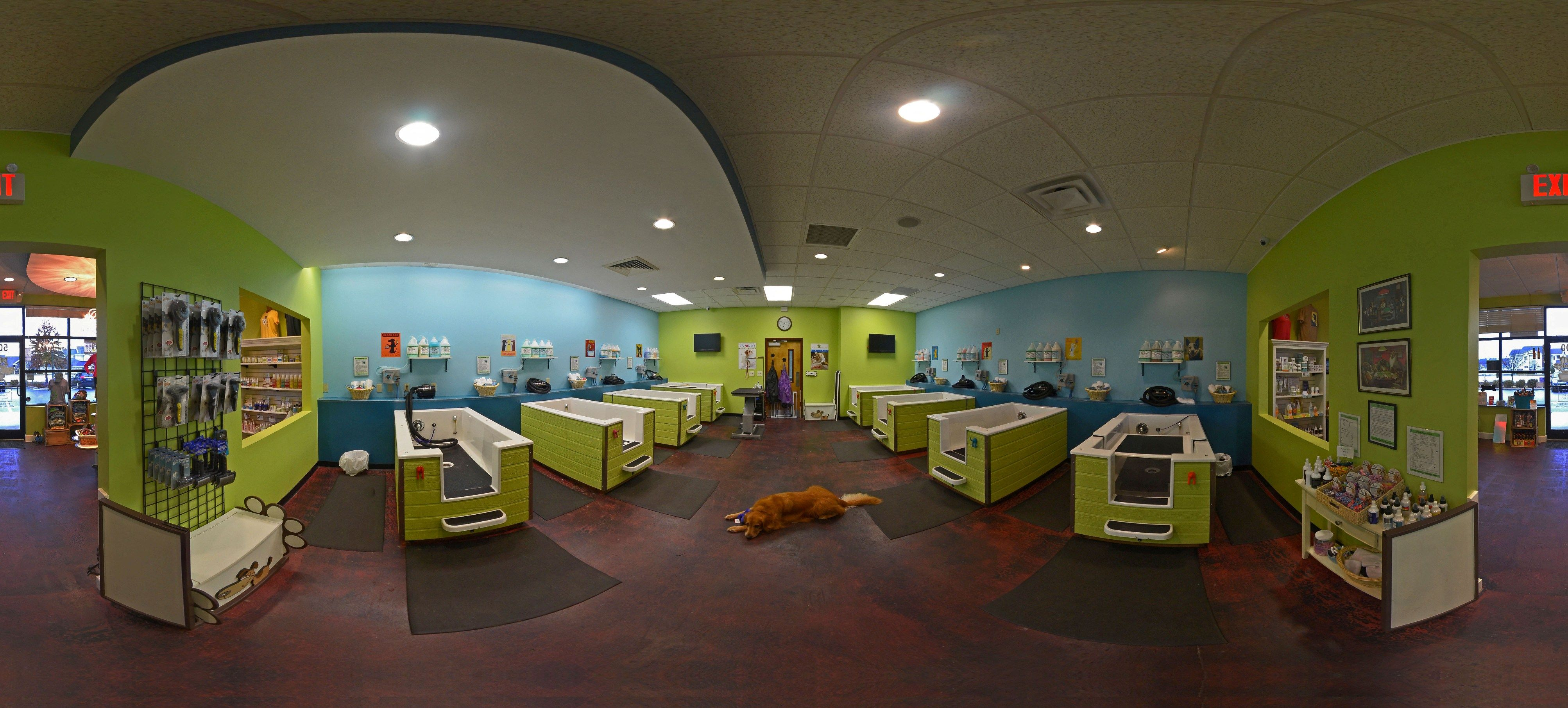 Luxury Suite hallway at Rover Oaks Pet Resort in Houston and Katy