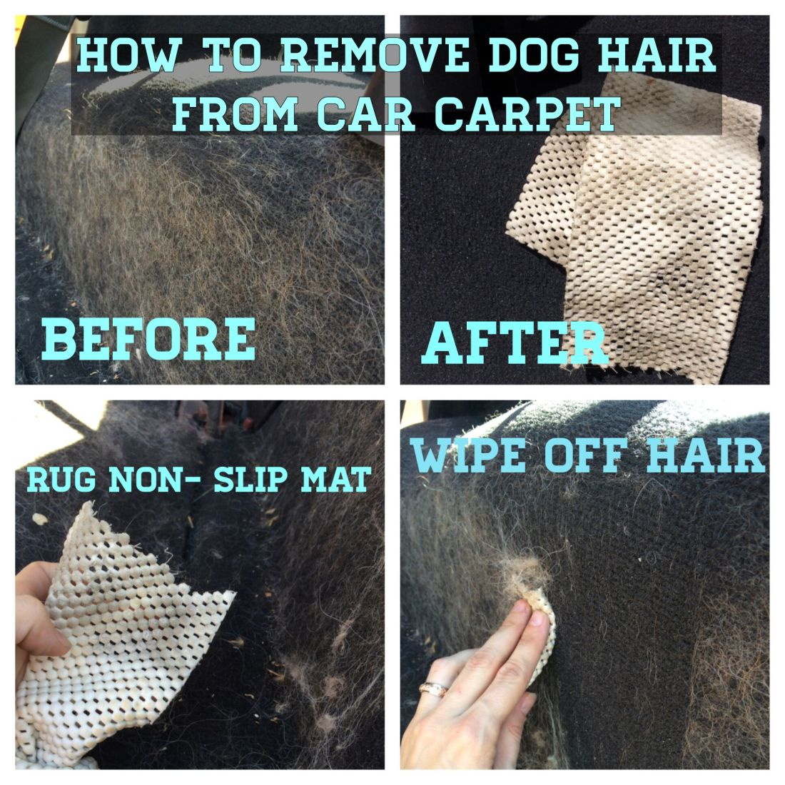 How to remove dog hair from car carpet why didnt i