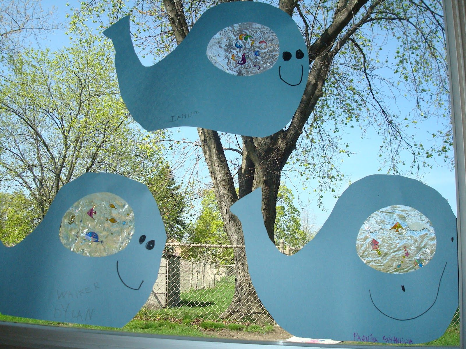 Trinity Preschool Mp Art And Bulletin Boards For Preschool Fish Theme Bellyfull Of Fish Whales