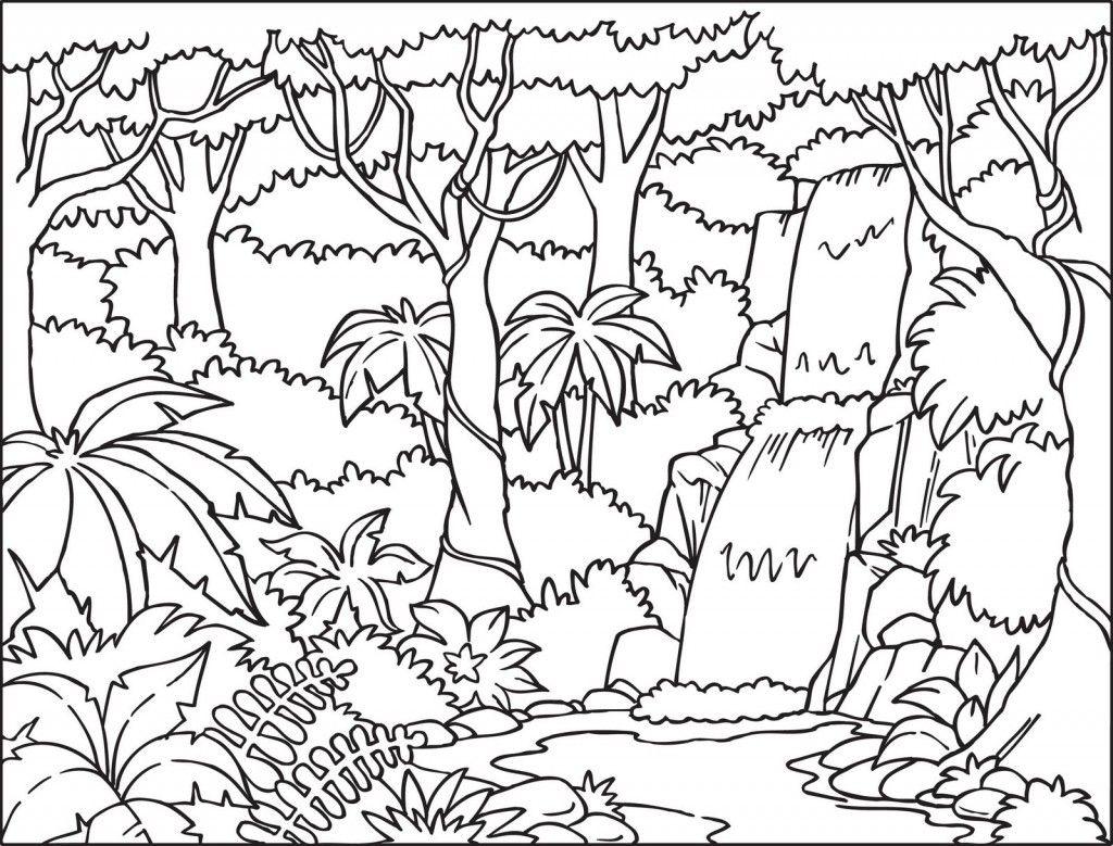 Tropical Rainforest Coloring Pages Color Jungle Coloring