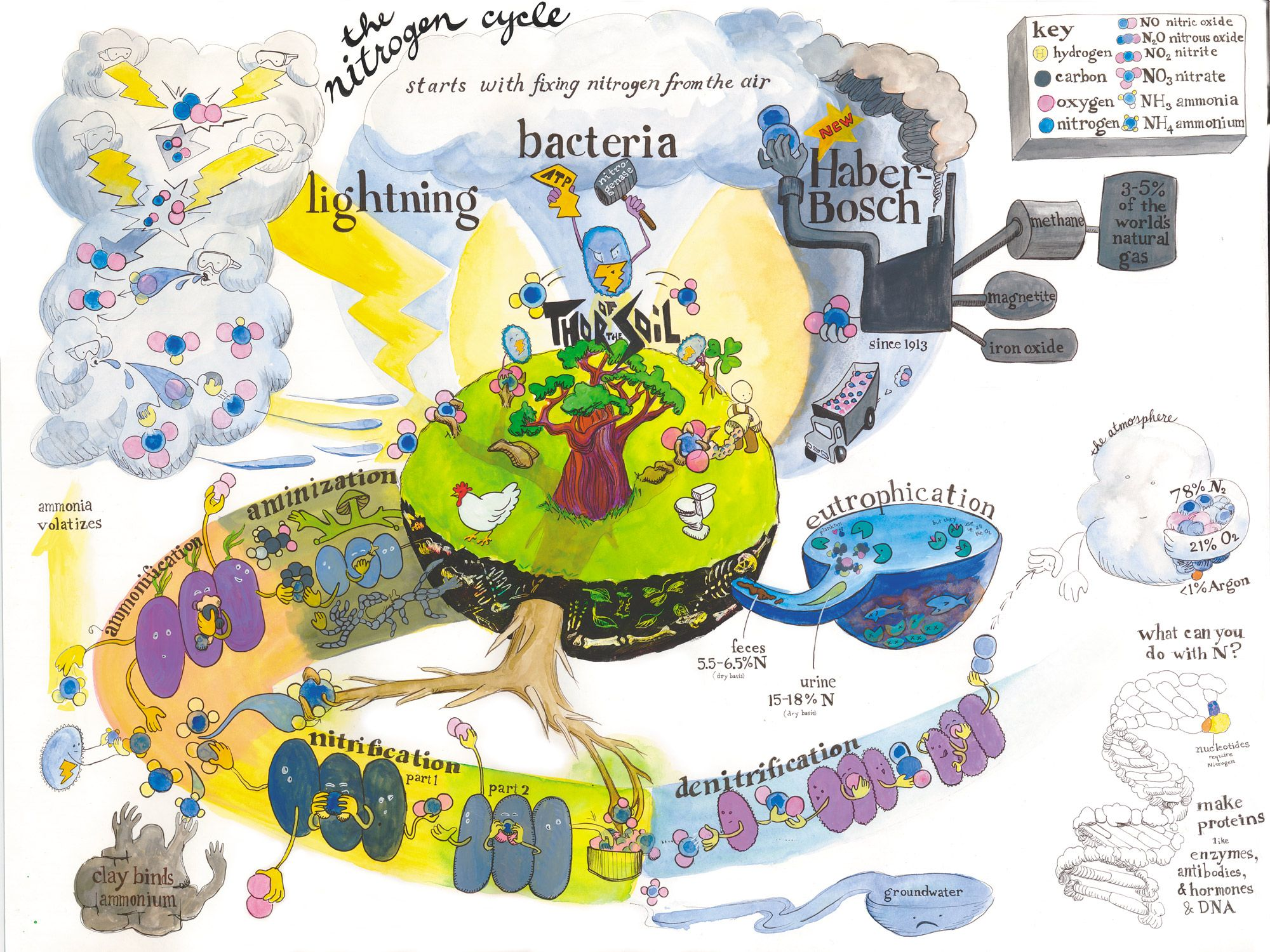 Rock Cycle Clim Te We R W Ter Cycle C Rb Cycle Nitrogen Cycle