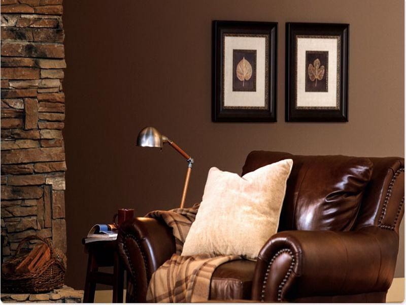 brown color schemes for living rooms home decor on living room color schemes id=30979