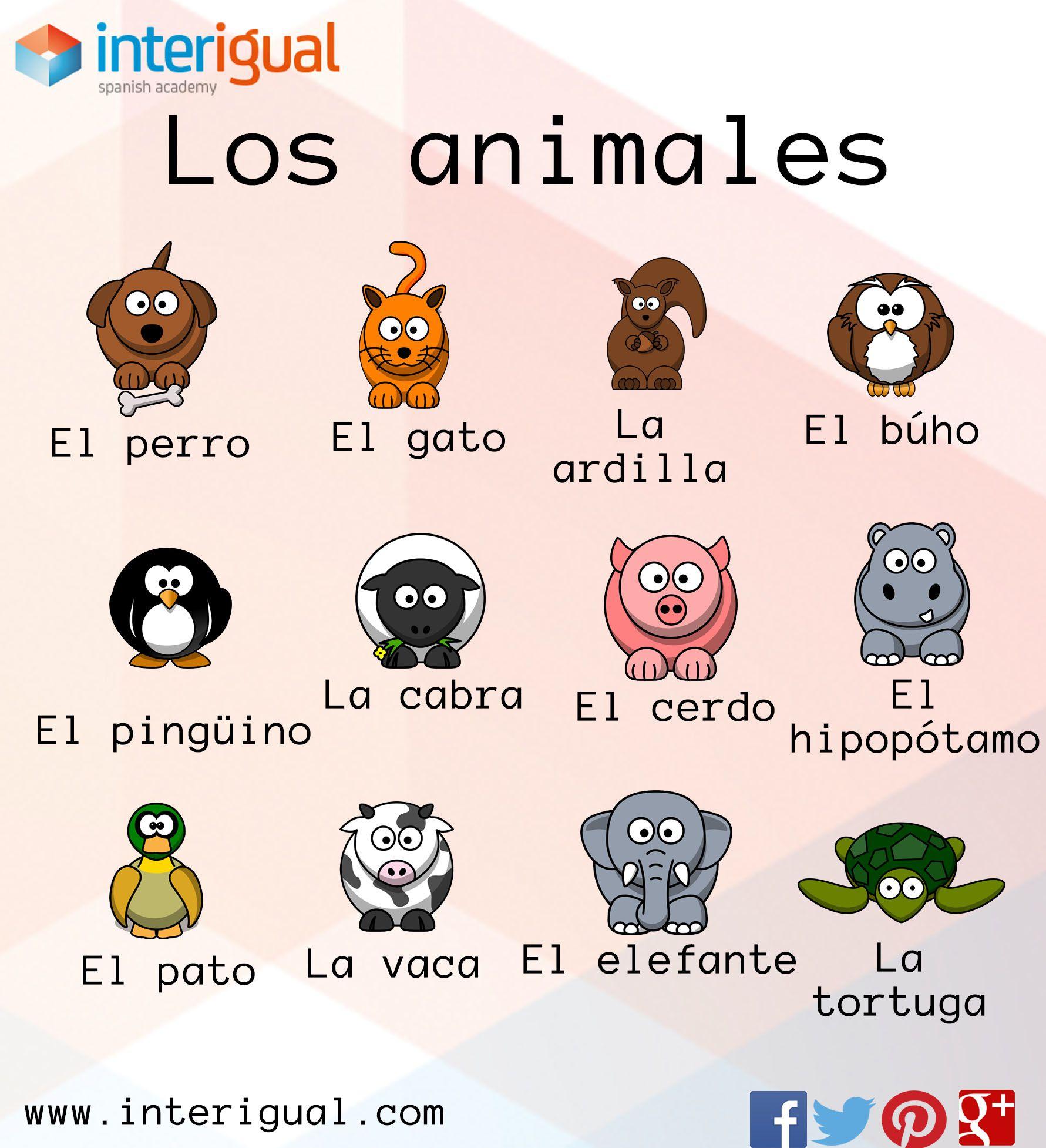Los Animales En Espanol The Animals In Spanish