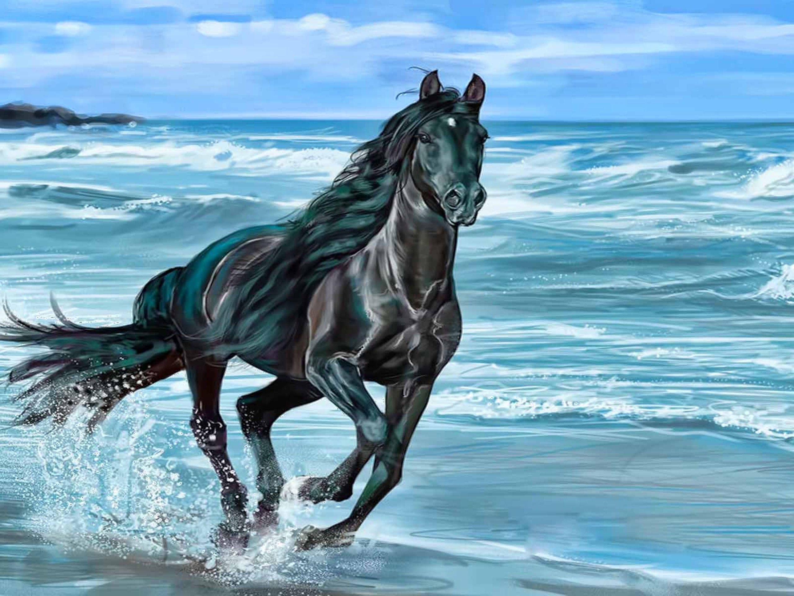 Palomino Horses Running In The Ocean
