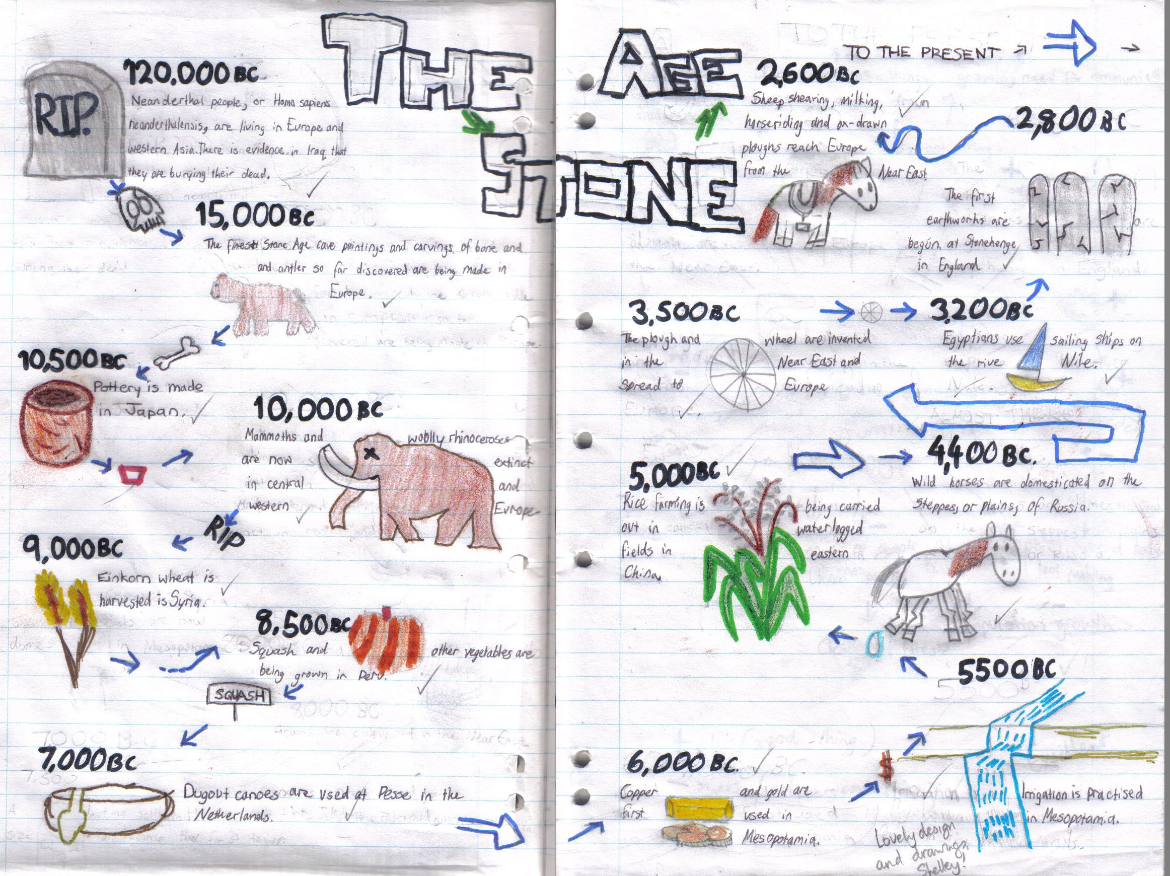 Shelley 7x Timeline Stone Age Copy