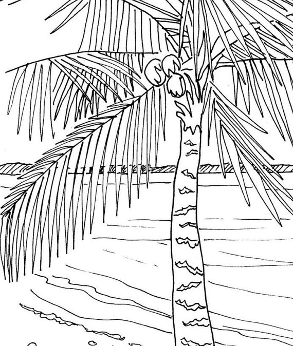 palm tree coloring page  embroidery pattern  pdf