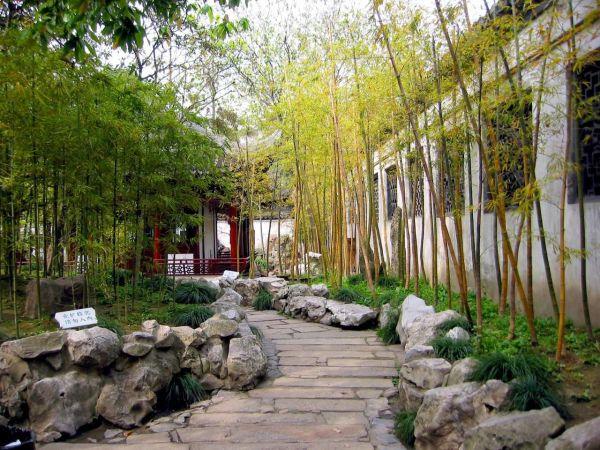 japanese bamboo garden design Photo of bamboo in the garden number 5174 | Gardening