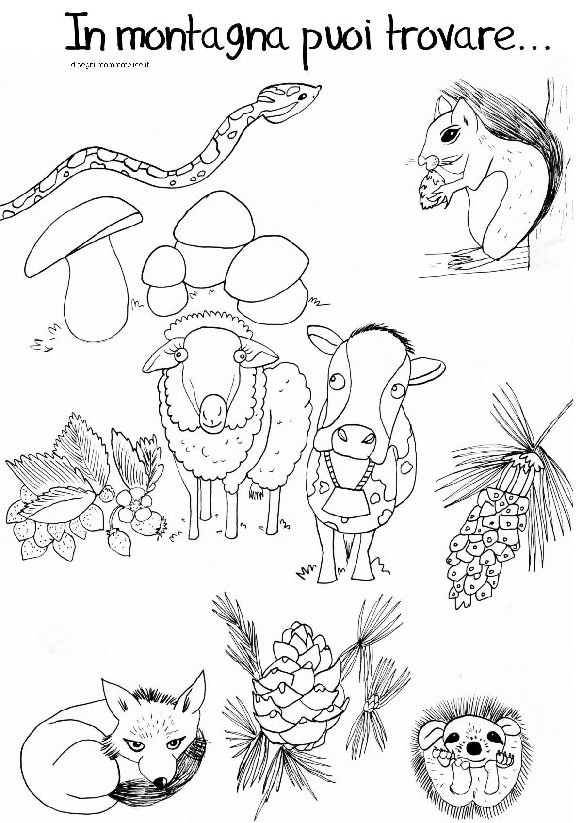 Disegni Da Colorare Bambini Montagna Animali Mucca