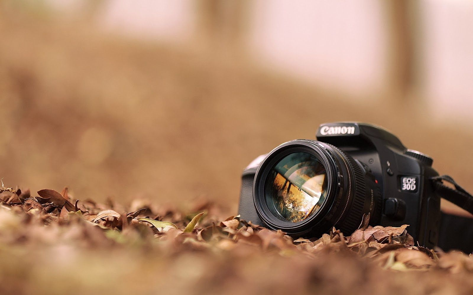 hd hd photography wallpapers 1080p for windows wallpaper full hd