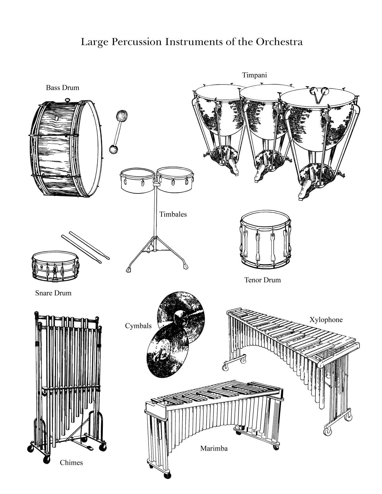 The Percussion Family Large Large Instruments From