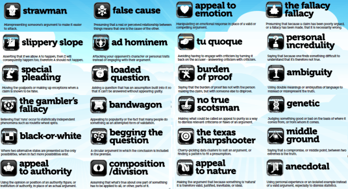 Image result for logical fallacies poster