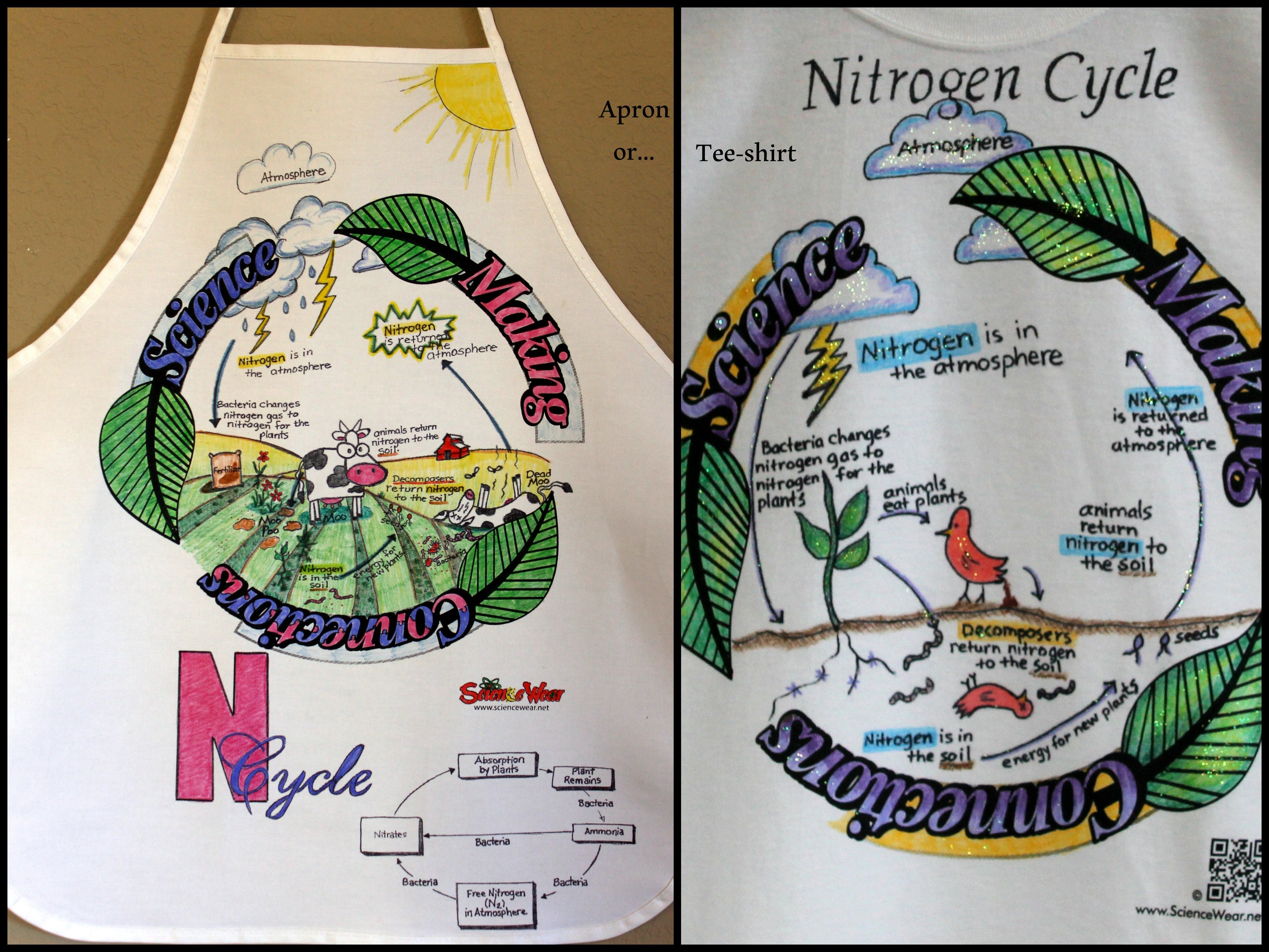 Nitrogen Cycle Project Students Will Love Fun Way To