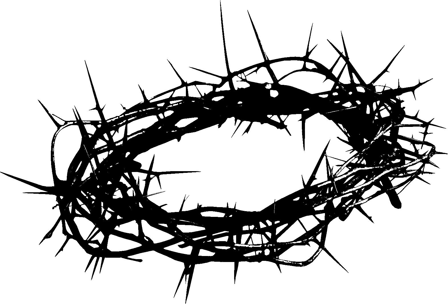 Crown Of Thorns Artwork Add Some Colorful Flowers To Make