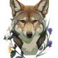 Mangycoyote tumblr art fantasy and mystical pinterest
