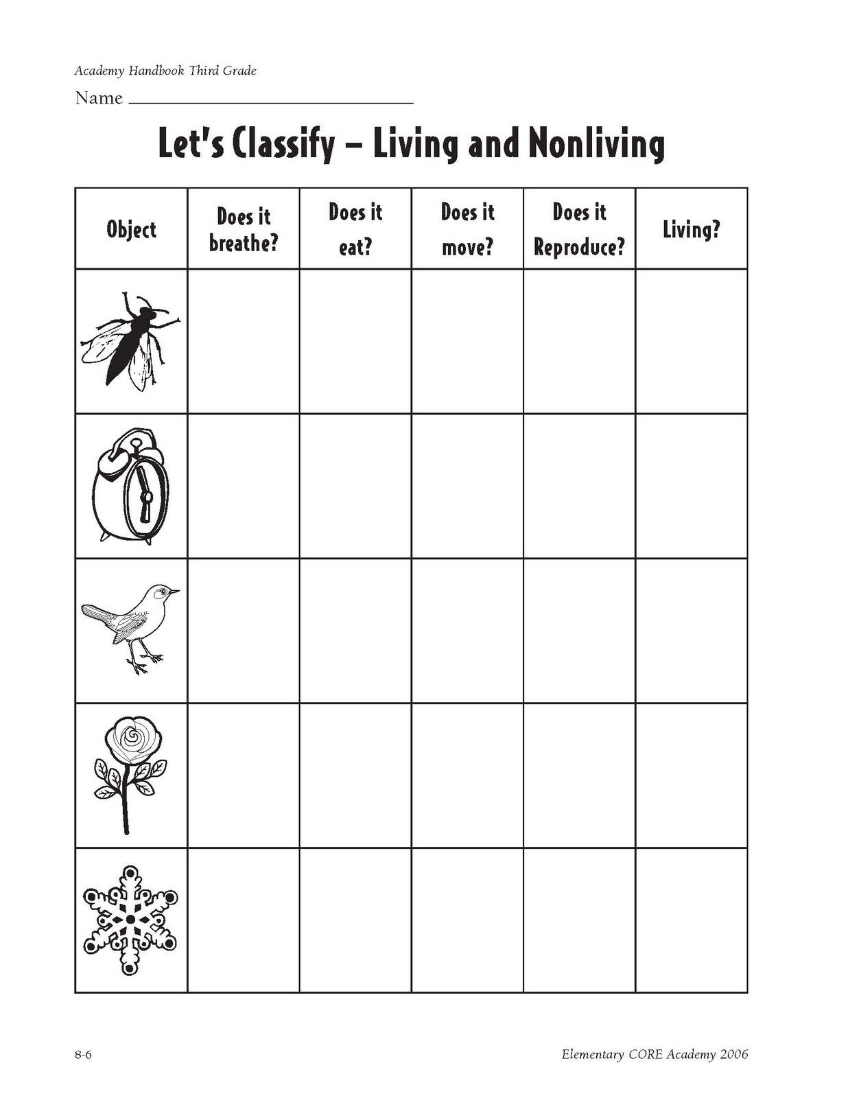 Science Worksheet For 3rd Grade Plants