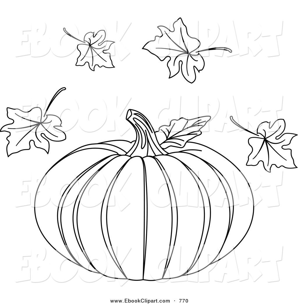 Coloring Book Flowers Outline
