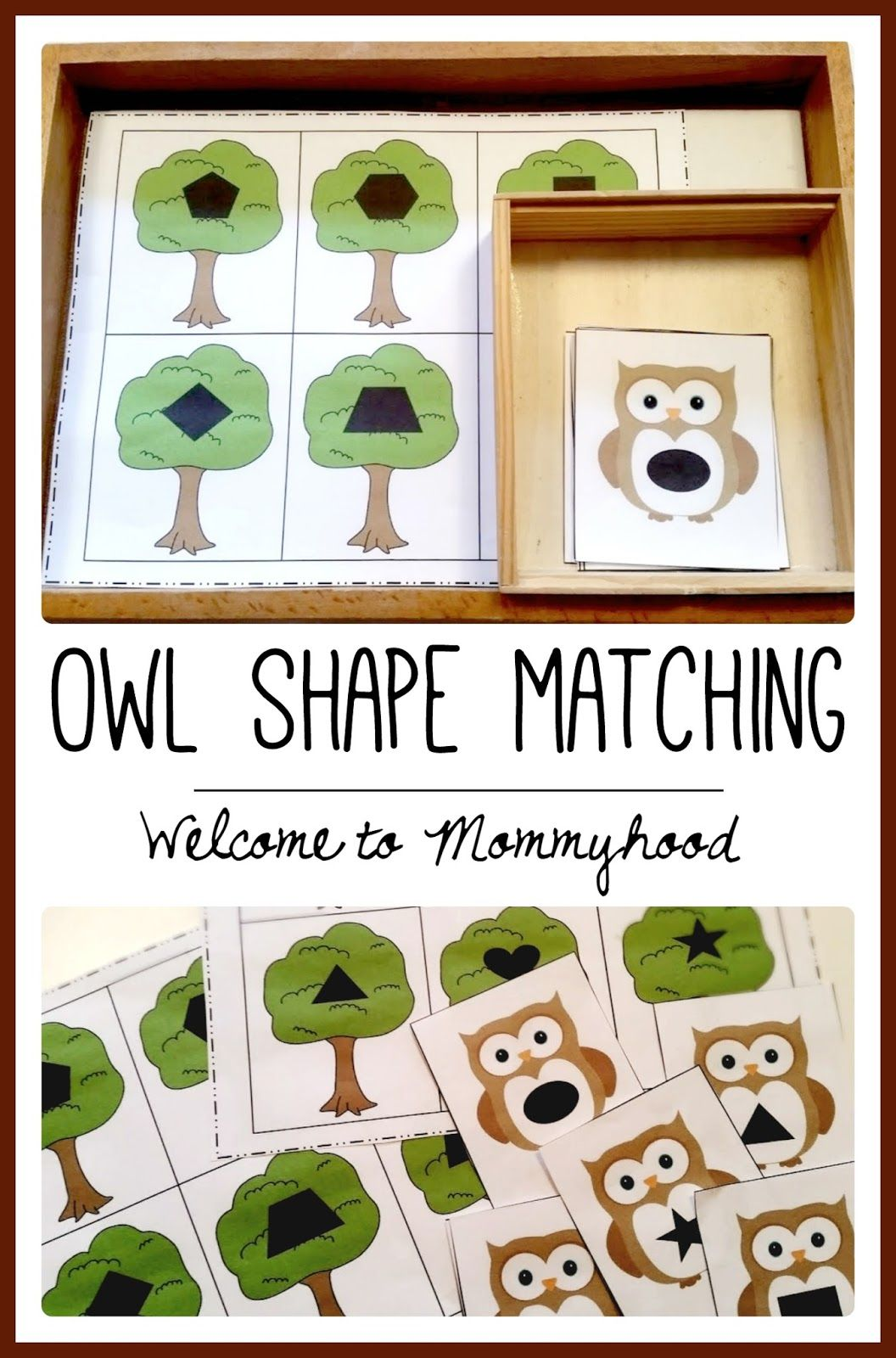 Free Owl Shape Matching Printable From Welcome To