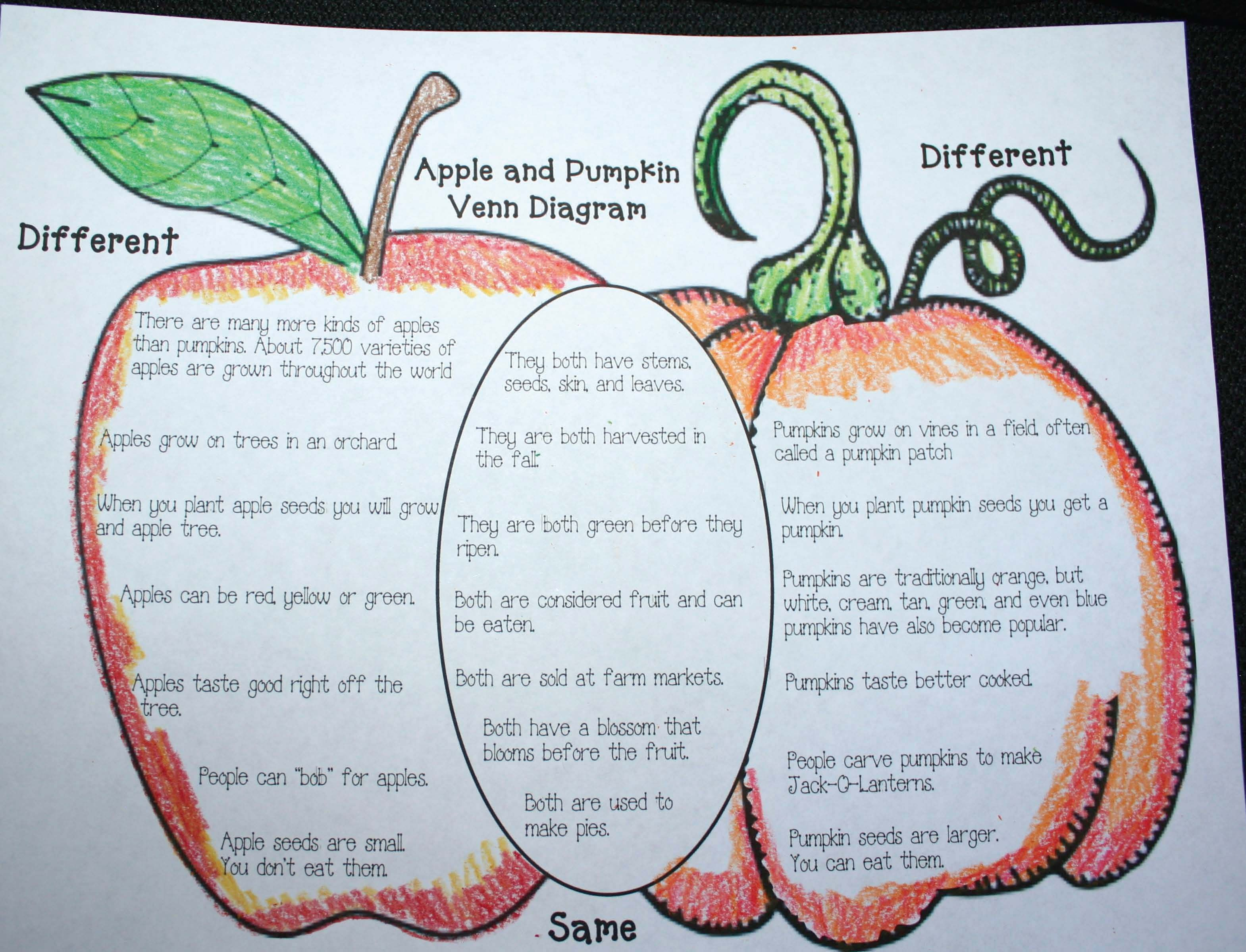 Pumpkin Activities Free Apple Amp Pumpkin Venn Diagram Fun