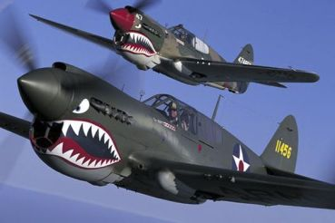 Image result for flying tigers shark noses