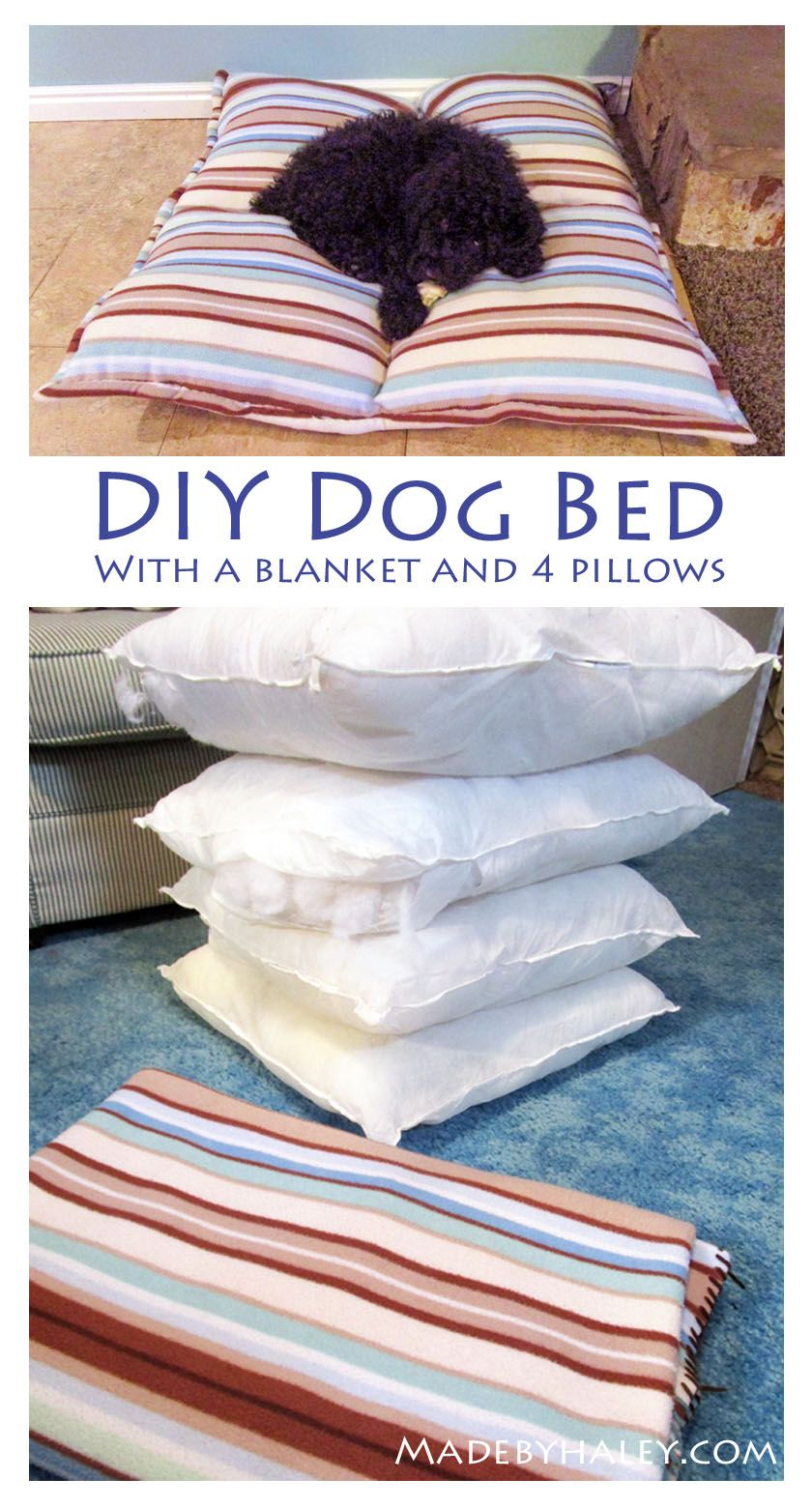 Diy dog bed out of an old blanket and throw pillows so