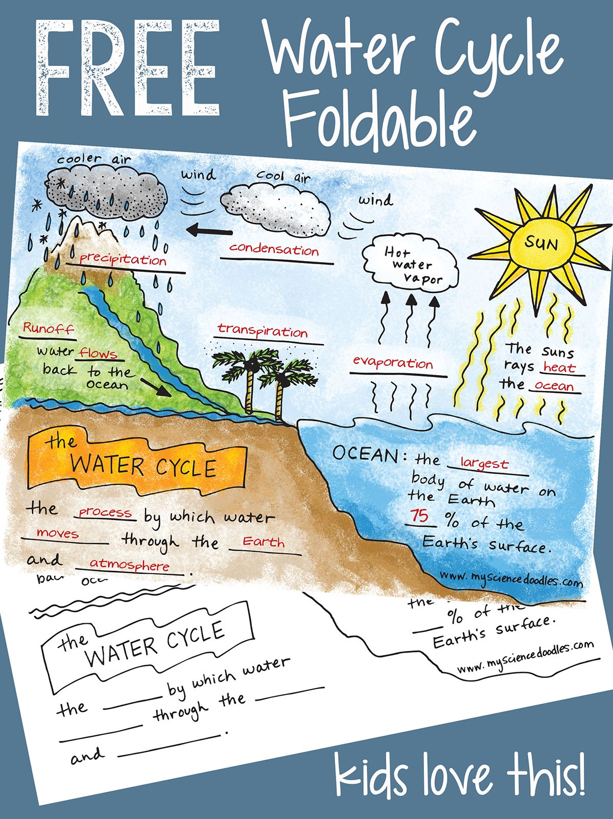 Free Water Cycle Interactive Notebook Activities Amp More