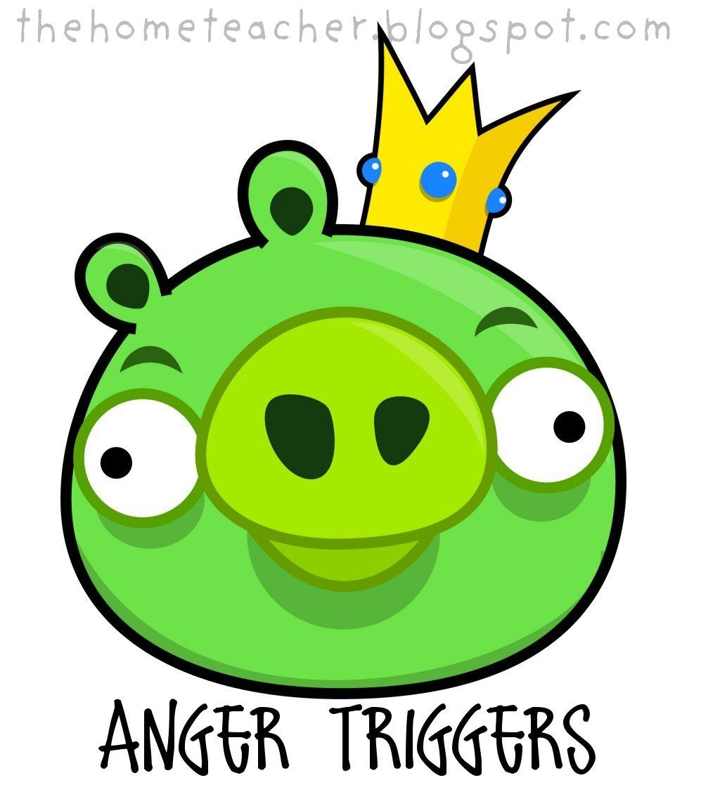The Home Teacher Don T Be An Angry Bird Slingshot Pigs