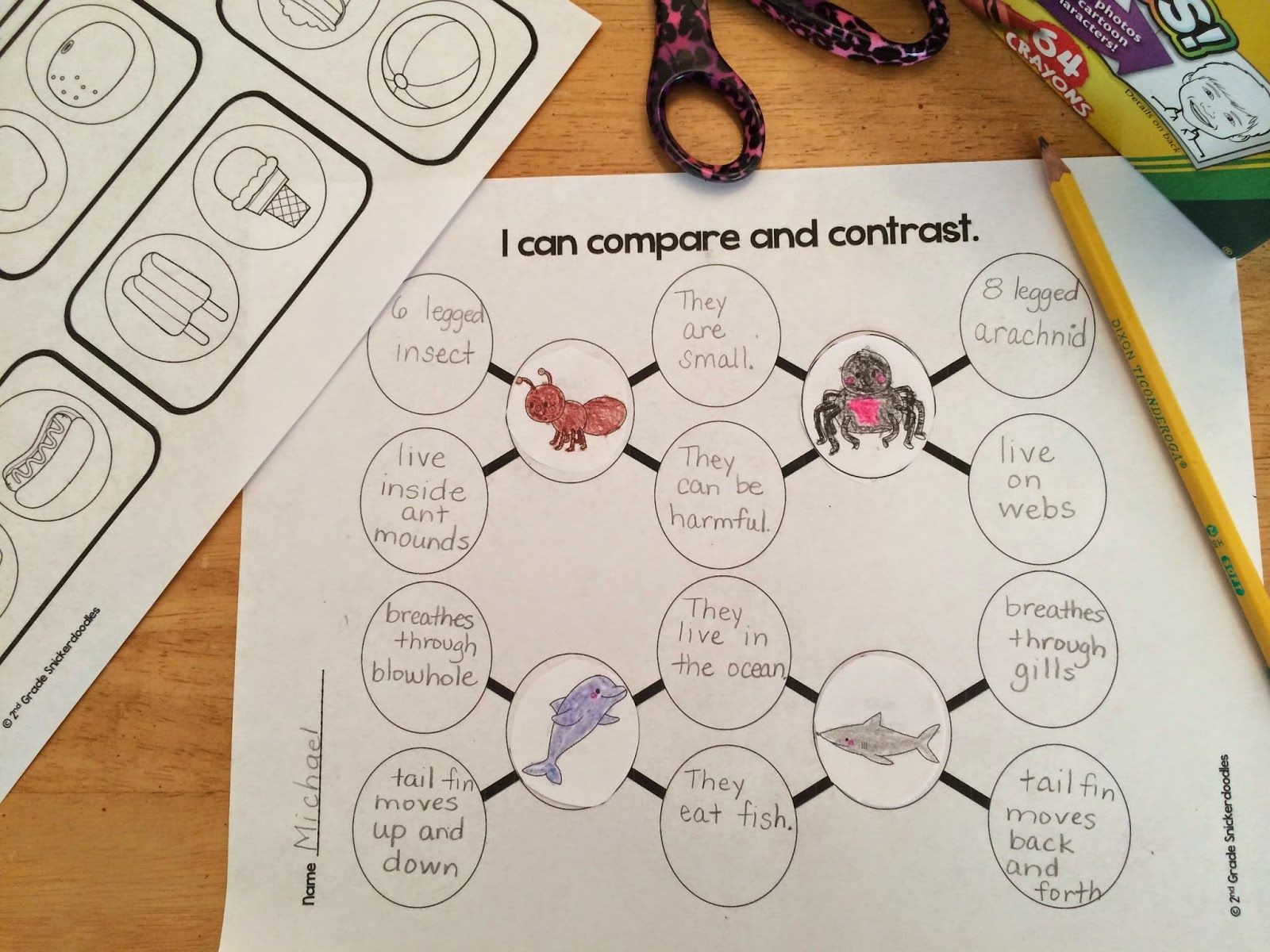2nd Grade Snickerdoodles Comparing And Contrasting Tips