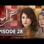 Download Free Popular drama Gumraah Ep # 28 Full  Drama – 11 – Dec – 2017