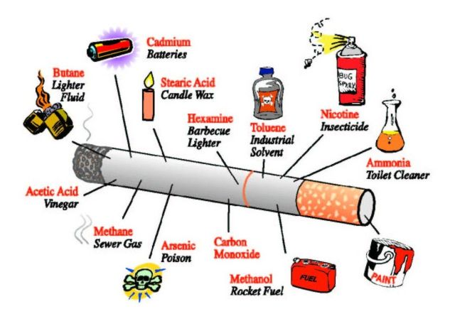 Image result for smoking lungs pictures