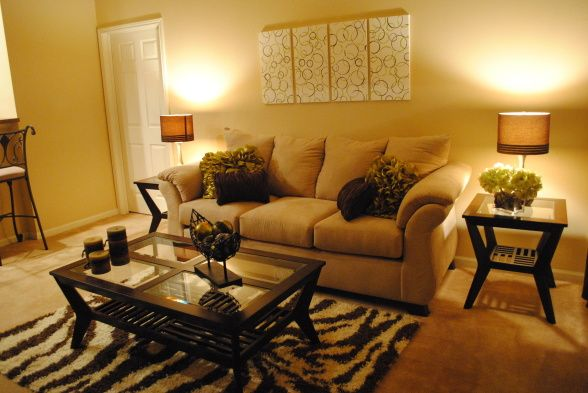 College Apartment Living Room Hi Im A College Student On