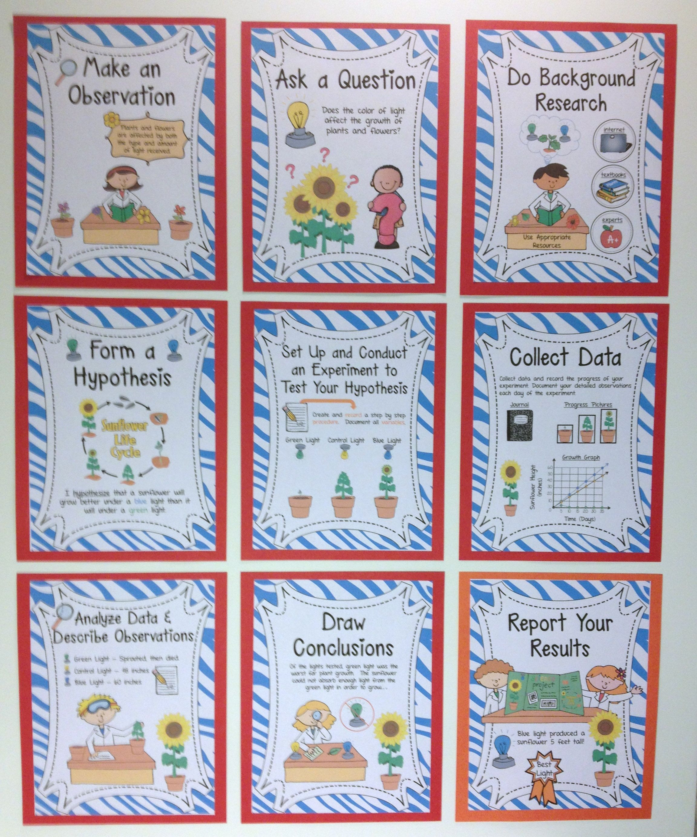 Scientific Method Posters Sunflower Experiment Themed