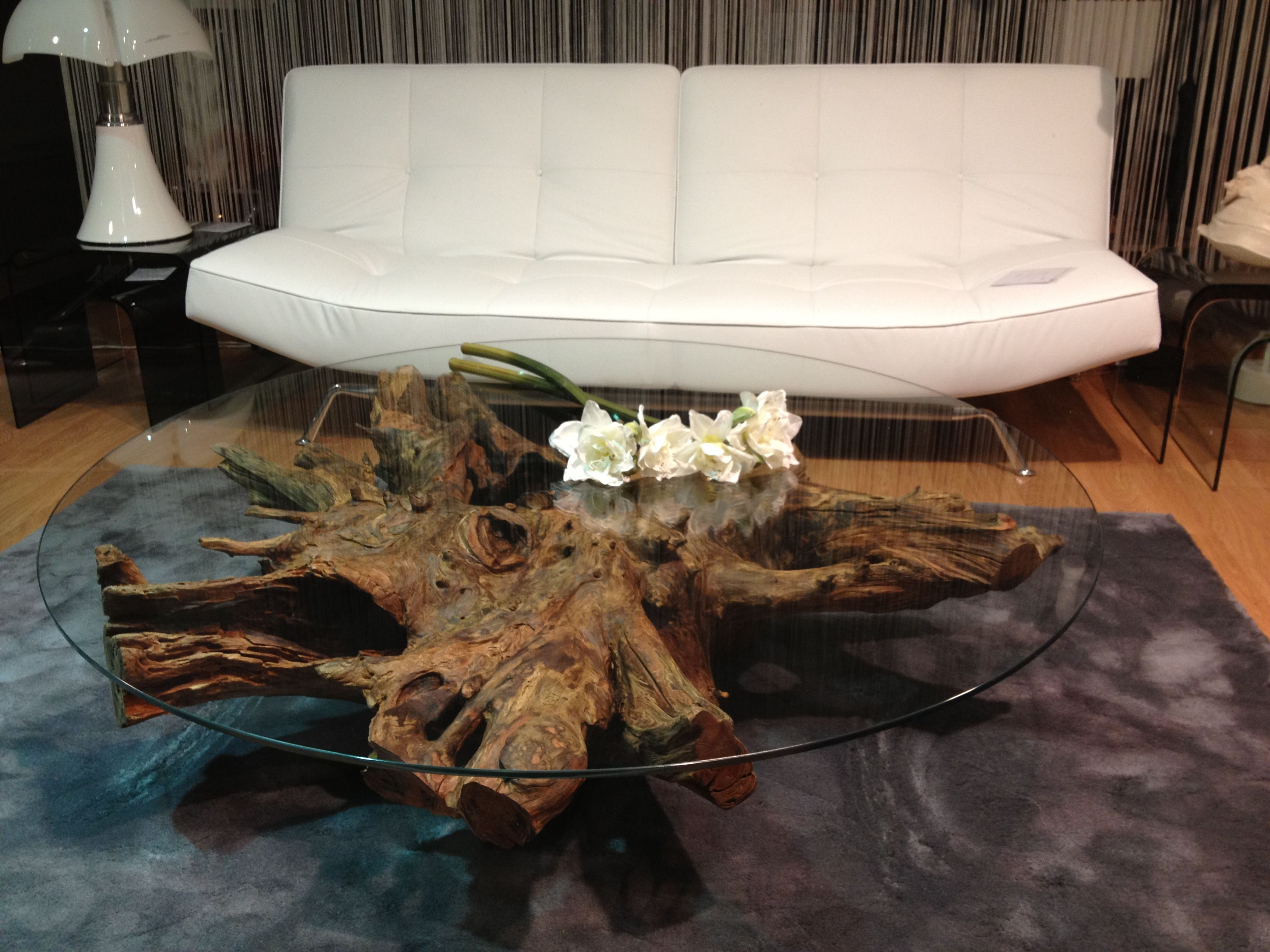 Table Basse Souche DarbreTree Roots Coffee Table Table