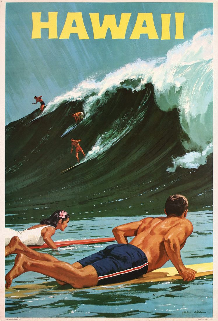 Poster do filme Surf no Hawaí