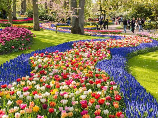 beautiful flower gardens pinterest Most Beautiful Flower Gardens in the World | Keukenhof
