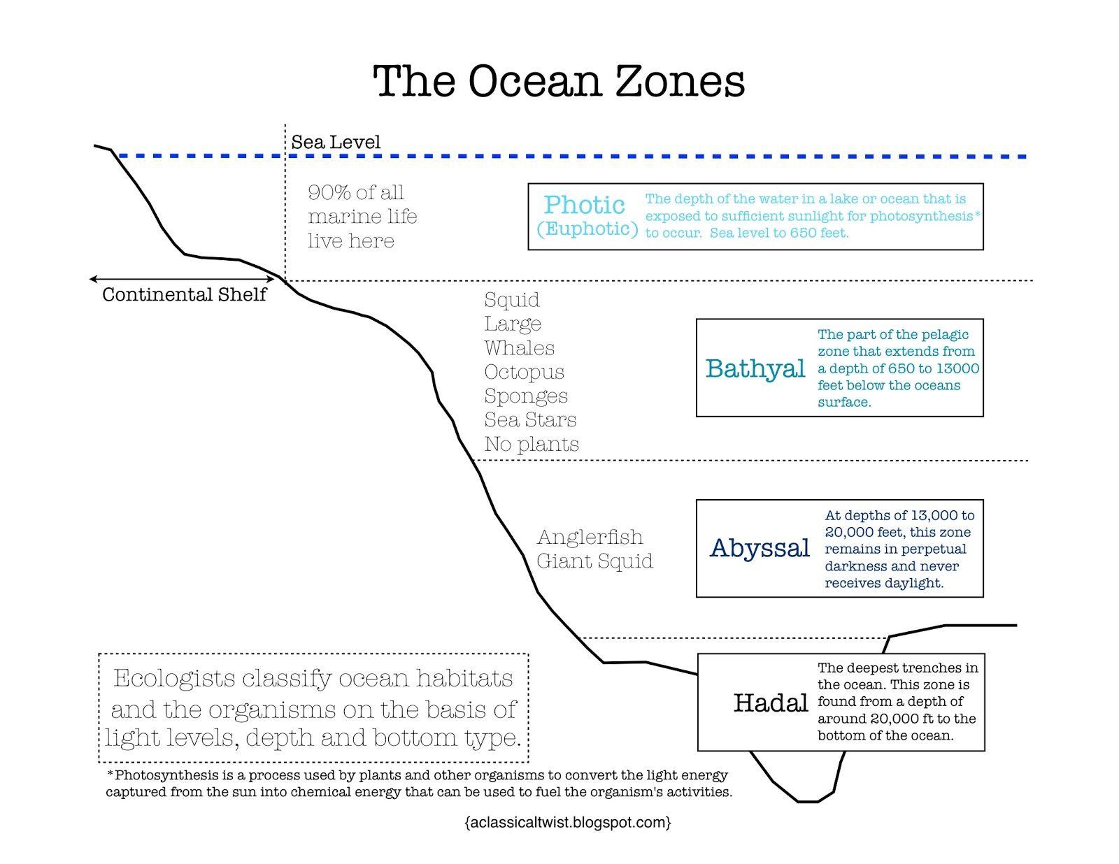 Homeschooling With A Classical Twist Ocean Zones