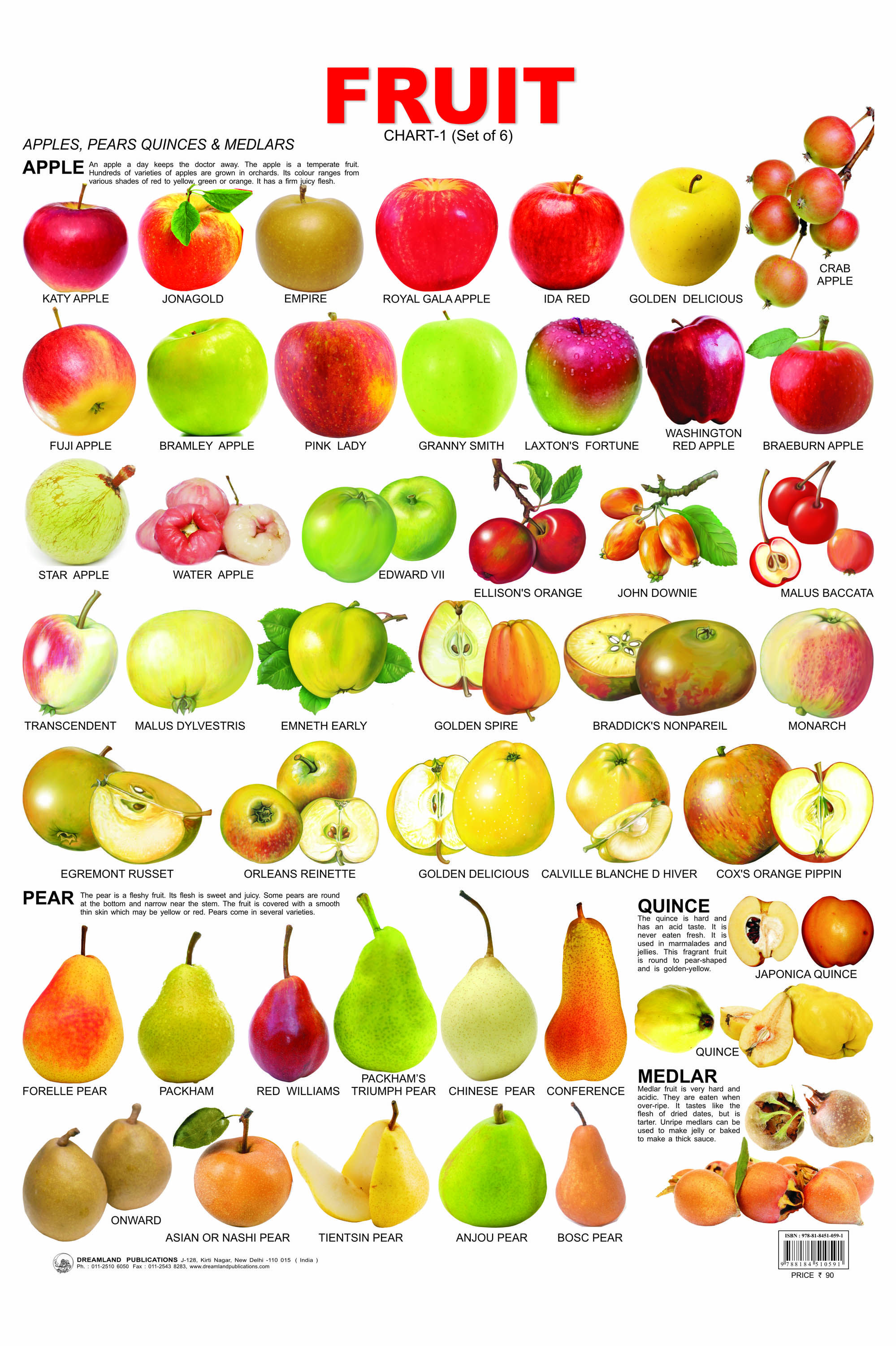 14 Fruit Chart 01
