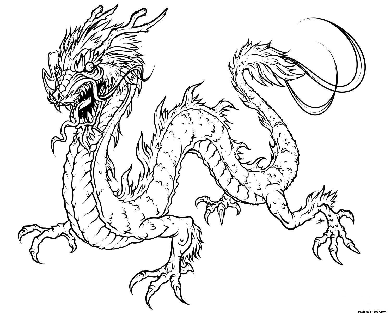 chinese new year dragon drawing