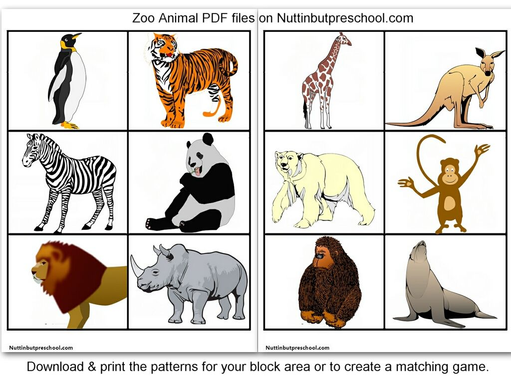 Zoo Animal Printables For Block Corner Or Matching Game Preschool