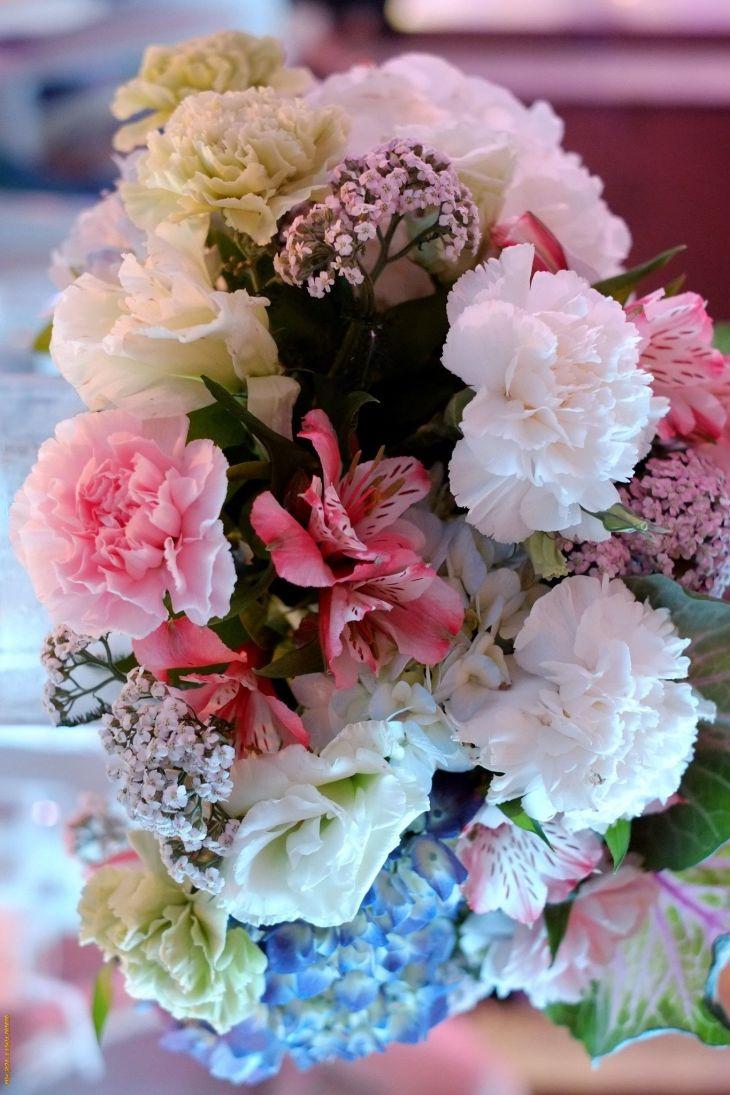 Pin by on Flower Pinterest Flower