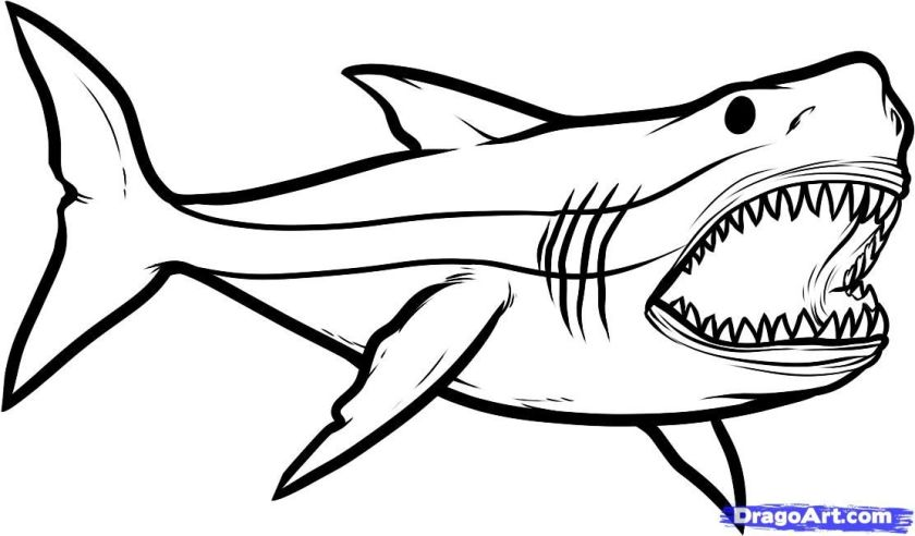 terifieying jaws  free coloring pages