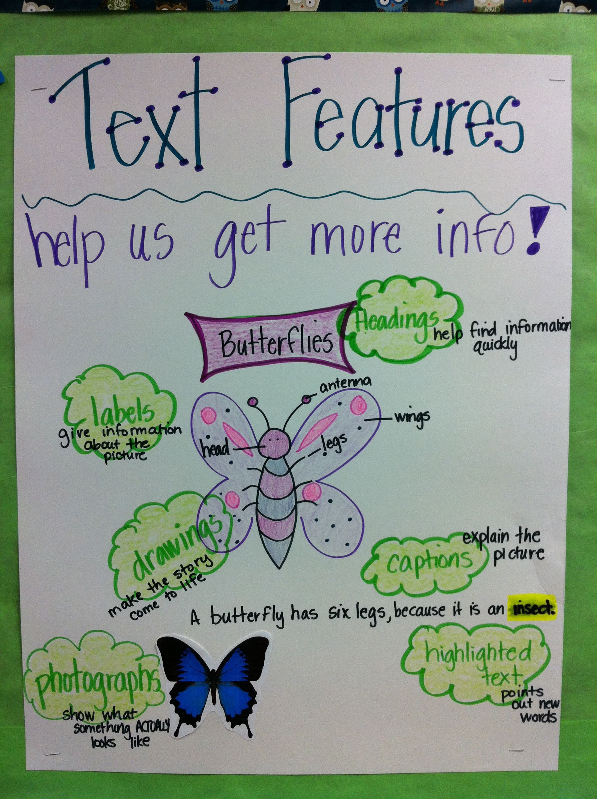 Text Features Anchor Chart Love This Especially Since