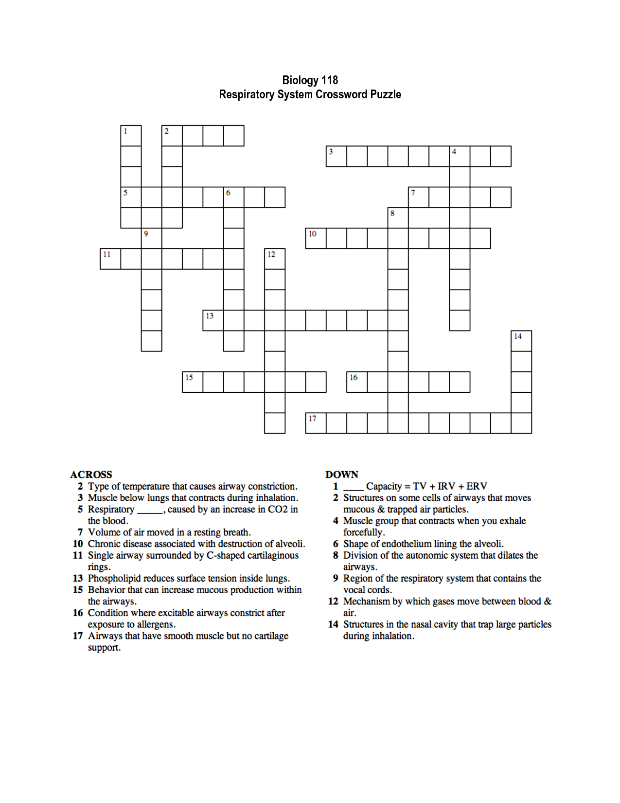 Respiratory System Crossword For Biology Classes
