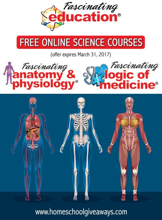 Human Anatomy And Physiology Online Course Bc – Periodic & Diagrams ...