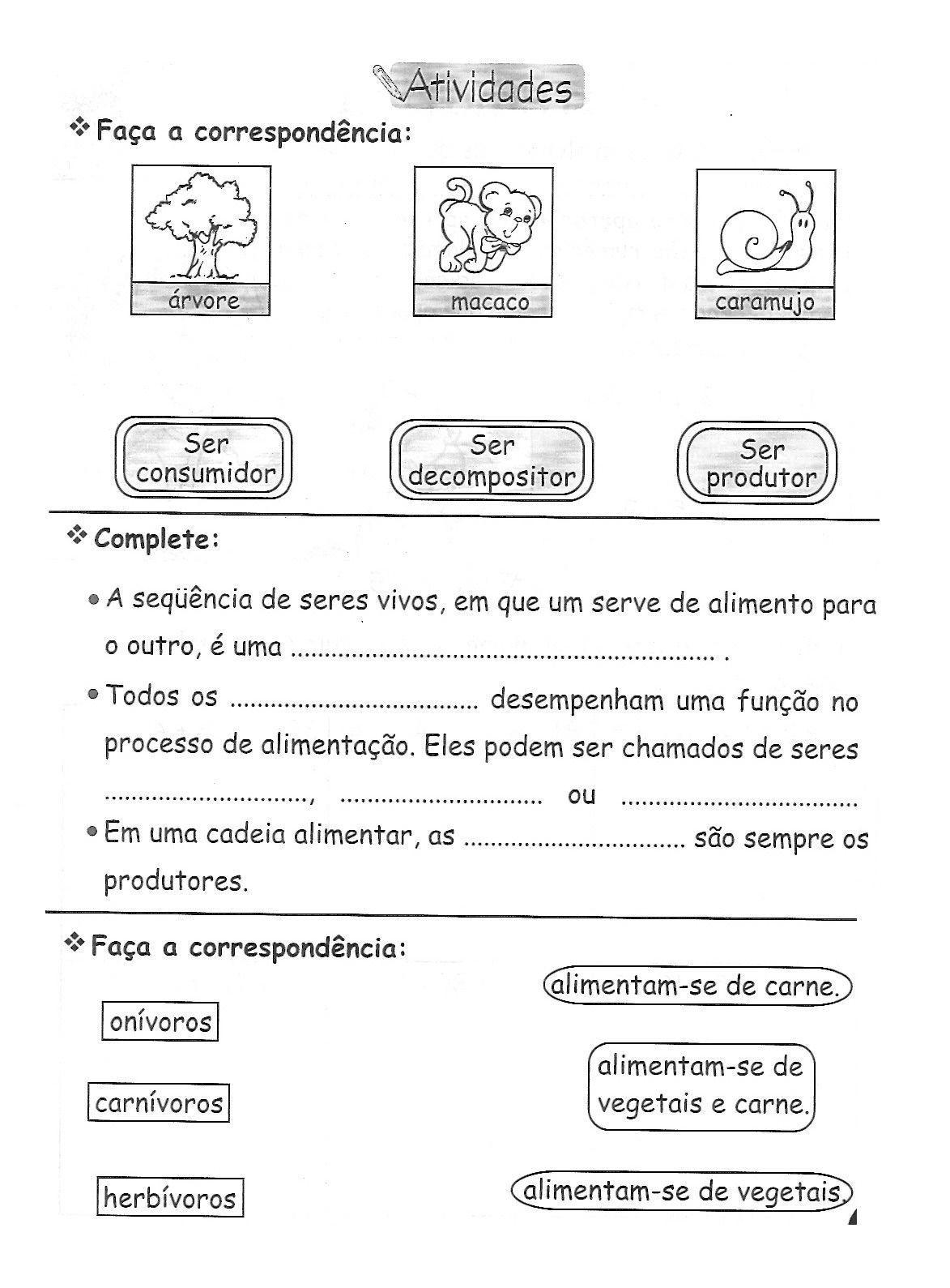 Cadeia Alimentar Animais Desenhos Colorir Imprimir 16
