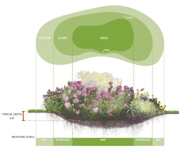 Image result for rain garden diagram