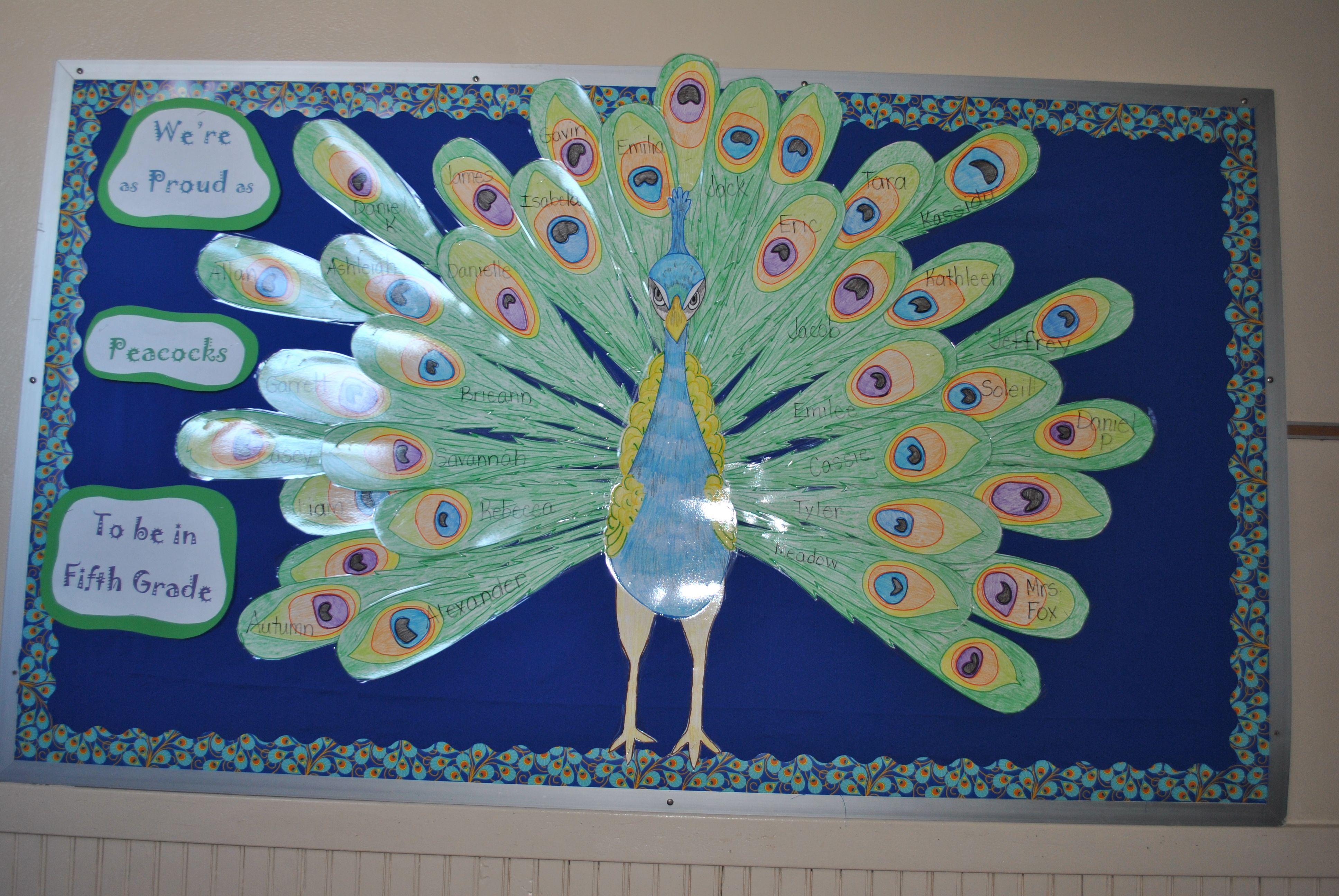 Peacock Theme Bulletin Board